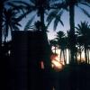 Reisen - Galerie - Tunesien-Tour 2002